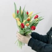 15 тюльпанов (яркий микс) с доставкой