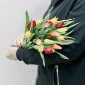 15 тюльпанов (яркий микс) купить