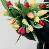 15 тюльпанов (яркий микс) заказать
