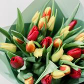 25 тюльпанов в упаковке (яркий микс) заказать