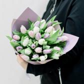 25 тюльпанов в упаковке (нежный микс) купить