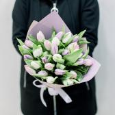 25 тюльпанов в упаковке (нежный микс) заказать