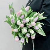 25 тюльпанов (нежный микс) купить