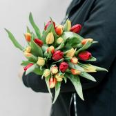 25 тюльпанов (яркий микс) купить