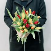 25 тюльпанов (яркий микс) заказать