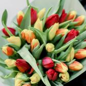 35 тюльпанов в упаковке (яркий микс) заказать