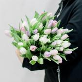 35 тюльпанов (нежный микс) купить