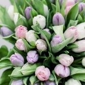 101 тюльпан (нежный микс) заказать