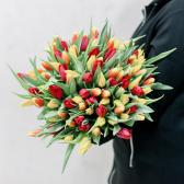 101 тюльпан (яркий микс) купить