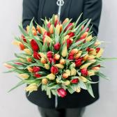 101 тюльпан (яркий микс)