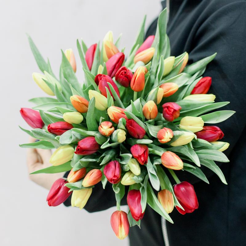51 тюльпан (яркий микс) с доставкой