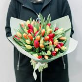 51 тюльпан с упаковкой (яркий микс) заказать