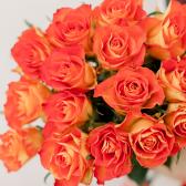 Букет из 15 оранжевых роз (Кения) заказать