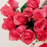 Букет из 15 малиновых роз (Эквадор) заказать