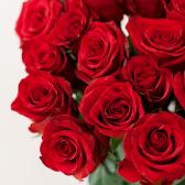 Букет из 15 красных роз 60 см (Эквадор) заказать