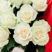 Букет из 15 белых роз 60 см (Эквадор) заказать