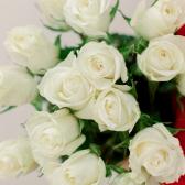 Букет из 15 белых роз (Эквадор) заказать