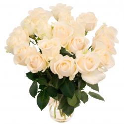 """Букет """"19 белых роз"""" (Эквадор)"""