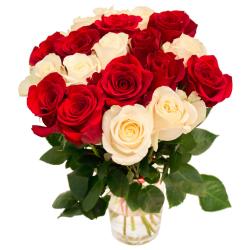 """Букет """"19 красных и белых роз"""" (Эквадор)"""