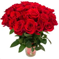"""Букет """"31 красная роза"""" (Эквадор)"""