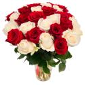 Букет из 31 красной и белой розы (Эквадор)
