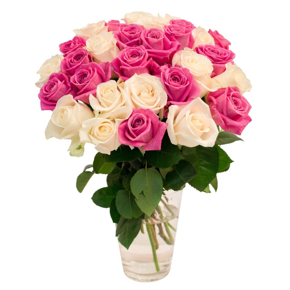 31 роза фото с девушкой