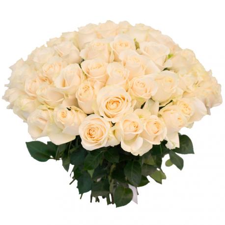 """Букет """"75 белых роз"""""""