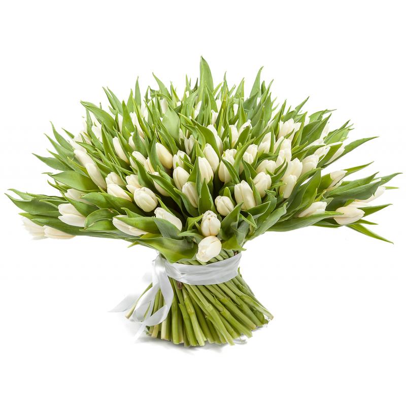 """Букет """"101 белый тюльпан"""" с доставкой"""
