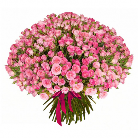 "Букет ""101 розовая кустовая роза"""