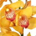 Орхидея Цимбидиум желтая купить