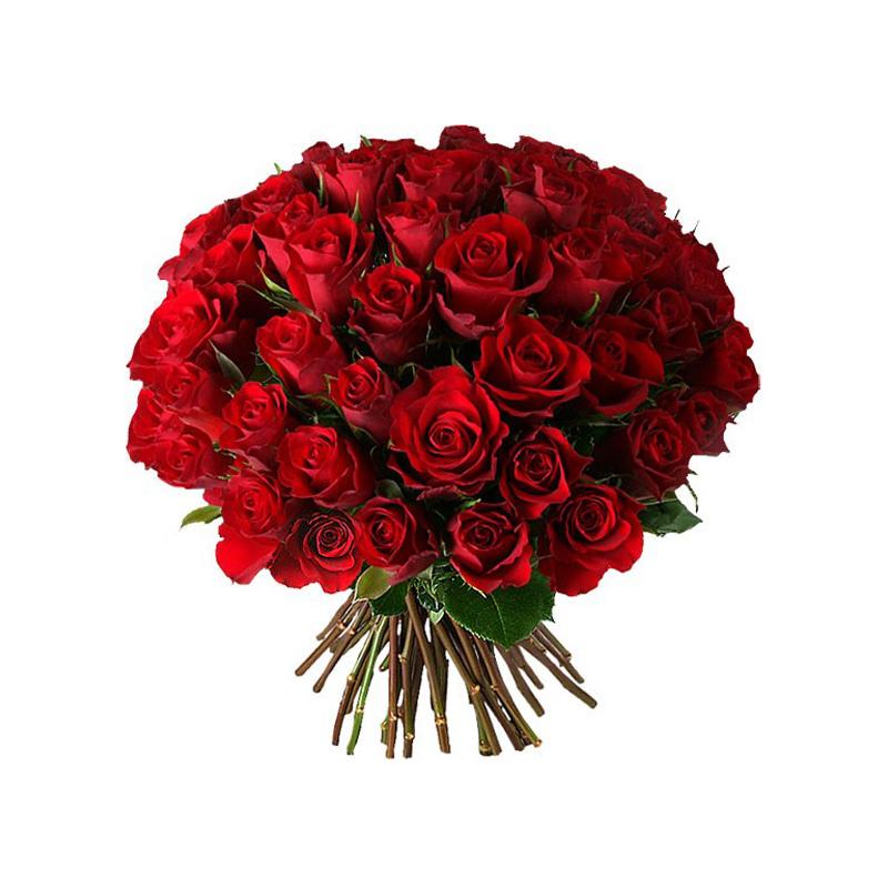 Роза Кения (микс) с доставкой