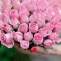 """Букет """"51 розовая роза"""" заказать"""