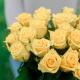 Букет из 25 жёлтых роз (Россия)