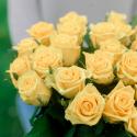 Букет из 25 жёлтых роз (Россия) заказать
