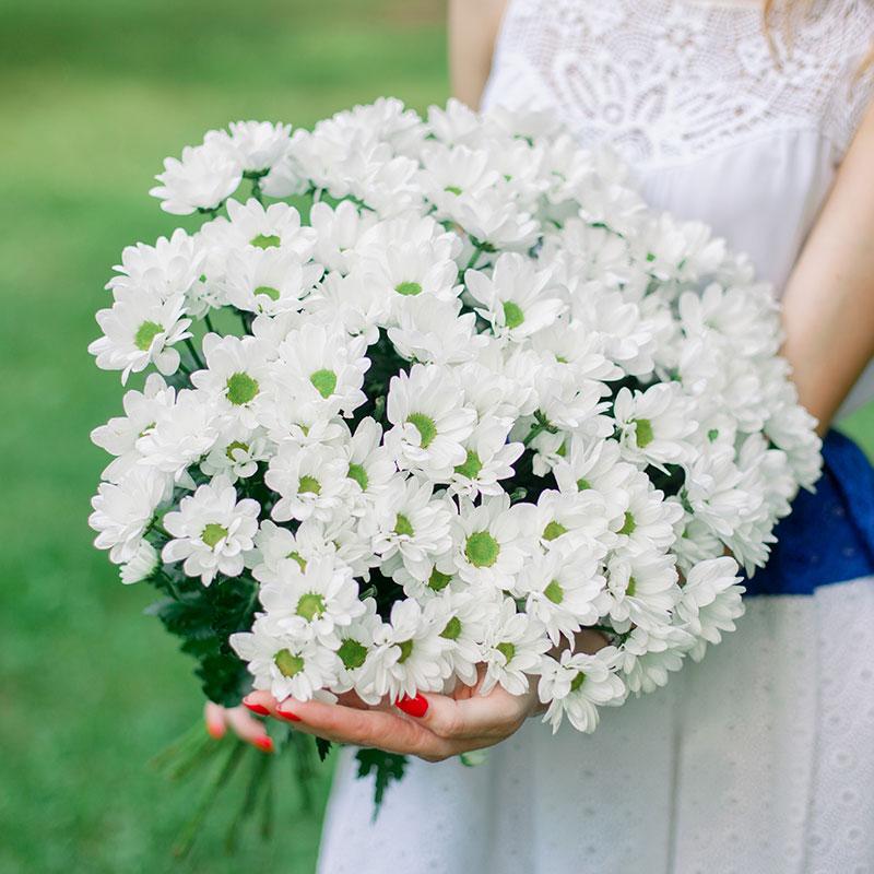 Букет из 15 белых хризантем с доставкой