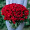 Букет из 101 красной розы 40 см (Кения)